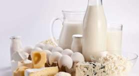Элементы ХАССП на молочном предприятии