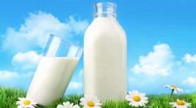 Молочно-питьевой ГОСТ Р 52090 2003 — как купить «правильное» молоко